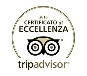 Fotografo Venezia - Leggi le recensioni su Tripadvisor