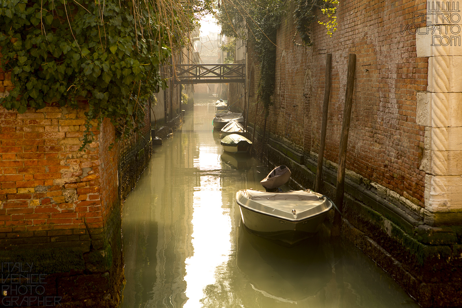 photographer venice photography workshop tour private photo walk